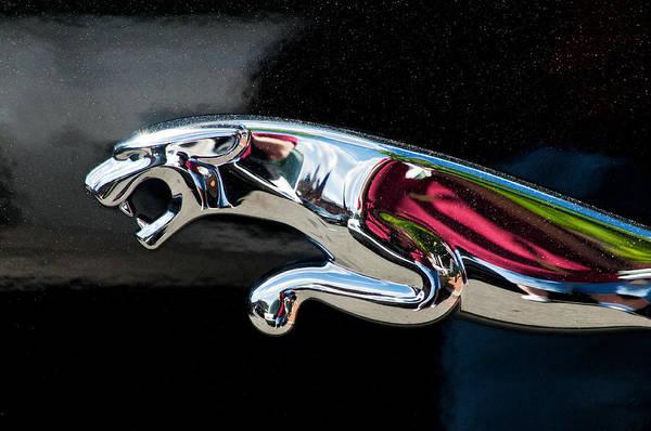 Don Johnson Photograph - Jaguar Car Emblem by Don Johnson