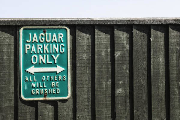 Channel Islands Photograph - Jaguar Car Park by Joana Kruse