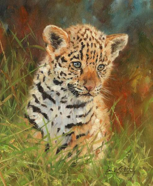 Jaguar Painting - Jaguar Cub by David Stribbling