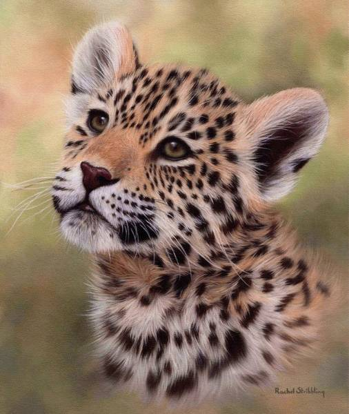 Jaguar Painting - Jaguar Cub Painting by Rachel Stribbling