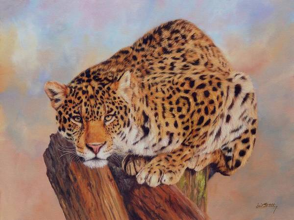 Jaguar Painting - Jaguar by David Stribbling