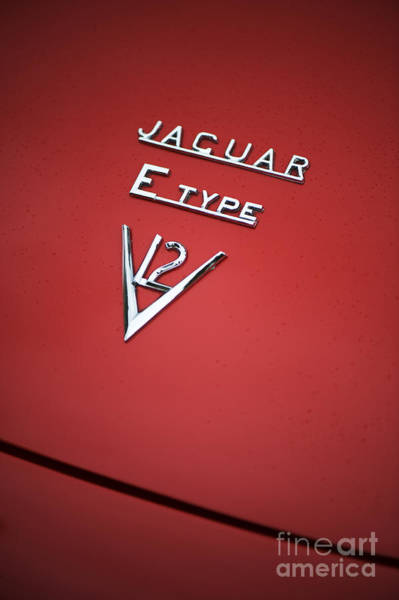 Motorcar Photograph - Jaguar E Type V12 Abstract by Tim Gainey