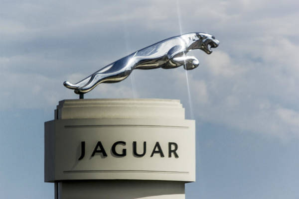 Digital Art - Jaguar Emblem by Photographic Art by Russel Ray Photos
