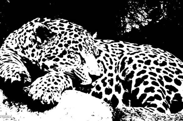 Jaguar In Reverse Art Print