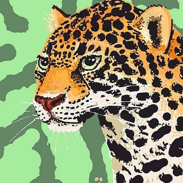 Jaguar Photograph - #jaguar #jaguards #cat #catds #bigcat by David Burles