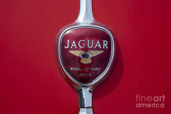 Photograph - Jaguar Oldtimer Symbol by Heiko Koehrer-Wagner