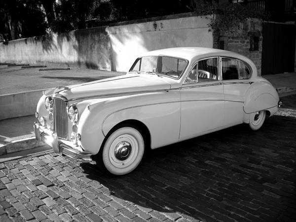 Photograph - Jaguar Series 01 by Carlos Diaz