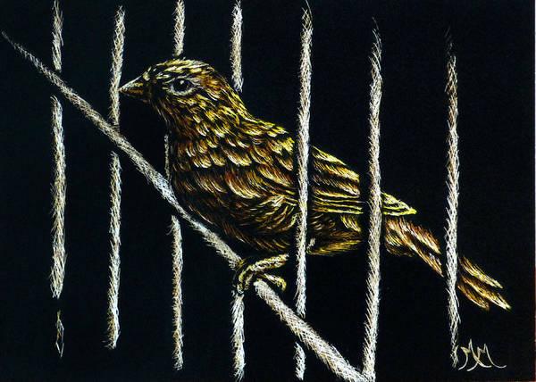 Jail Break Art Print