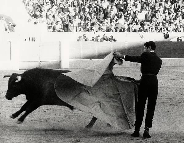 Matador Photograph - Jaime Ostos Bullfighting by Henry Clarke