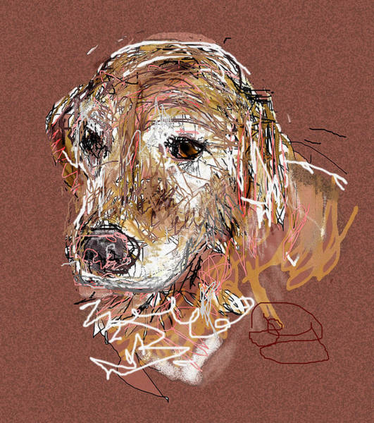 Golden Retriever Digital Art - Jake Boy by Joyce Goldin