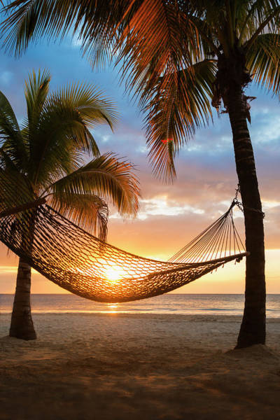 Silhouette Photograph - Jamaica, Hammock On Beach At Sunset by Tetra Images