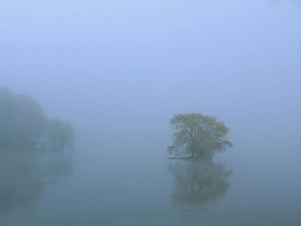 Photograph - Jamaica Pond by Juergen Roth