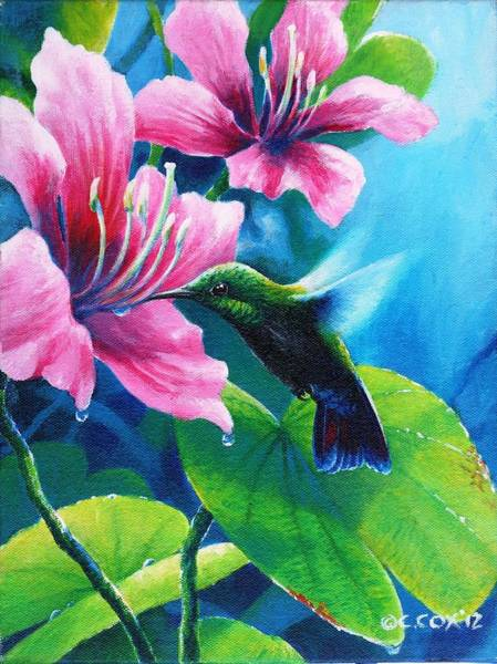 Painting - Antillean Mango by Christopher Cox