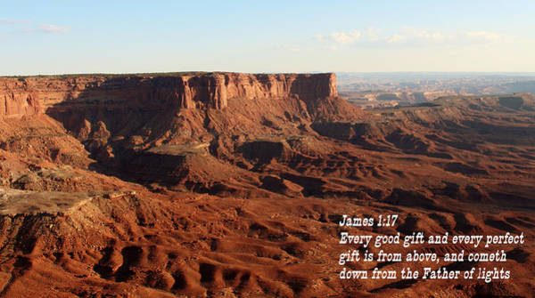Zion Mixed Media - James 1-17 Canyonlands N P by Nelson Skinner