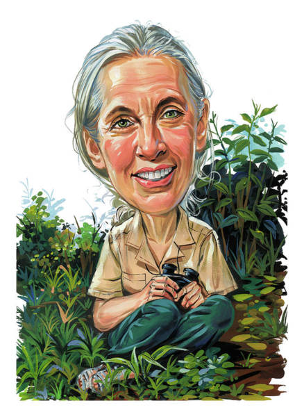 Super Wall Art - Painting - Jane Goodall by Art