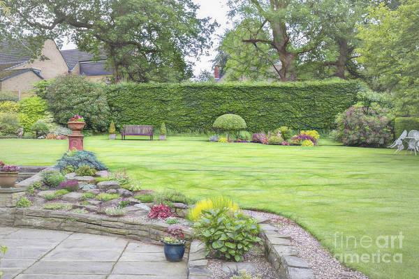 Photograph - Janet's Garden by Elaine Teague