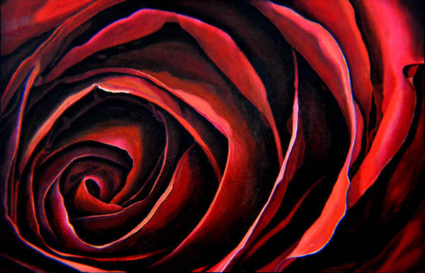 January Rose Art Print