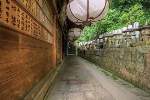 Nara Wall Art - Photograph - Japan, Nara, Nara Park by Jaynes Gallery