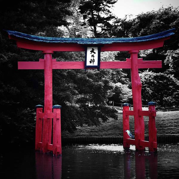 Photograph - Japanese Garden by Natasha Marco