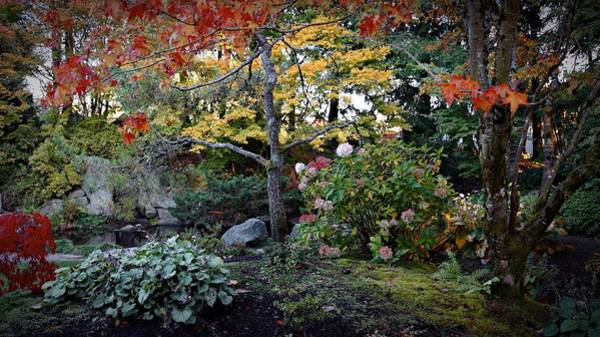 Photograph - Japanese Garden by Patricia Strand