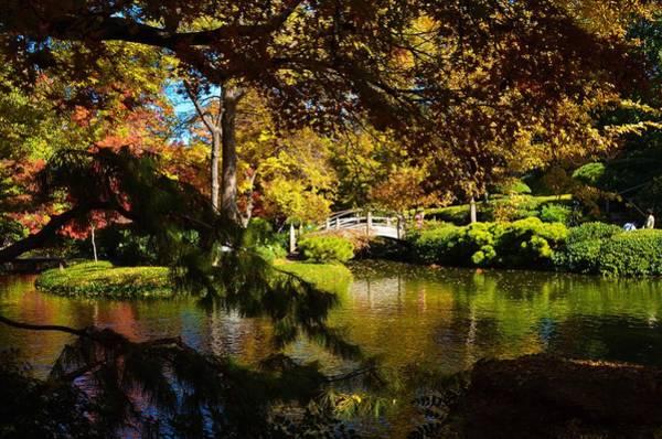 Photograph - Japanese Gardens 9561 by Ricardo J Ruiz de Porras