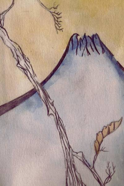 Baby Eagle Drawing - Japanese Mountain by Seb Mcnulty