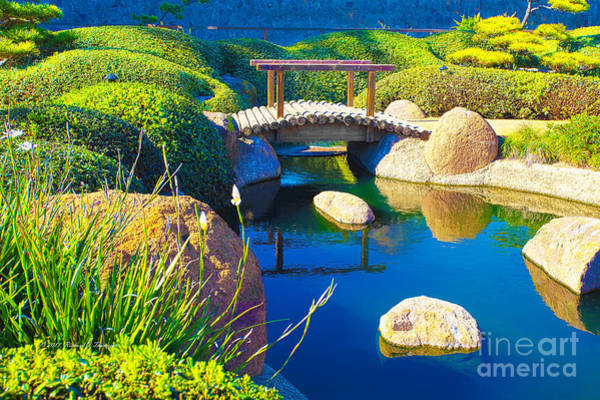 Photograph - Japanese Pond by Richard J Thompson