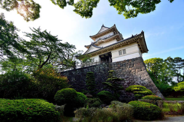 Himeji Photograph - Japanese Style Castle With Nice Sky And Big Tree by Wittaya Sensod