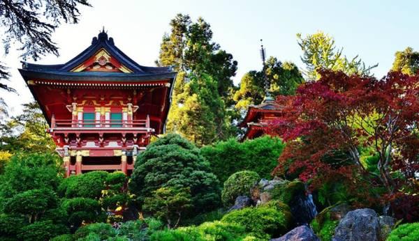 Wall Art - Photograph - Japanese Tea Garden by David Lobos