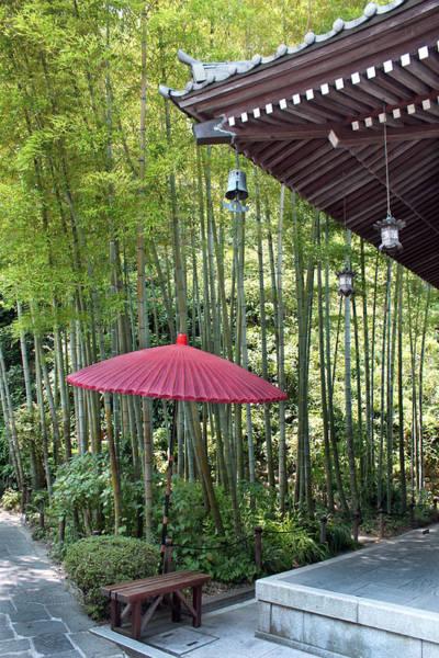 Photograph - Japanese Umbrella by Eena Bo