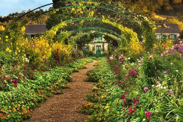 Claude Monet Photograph - Jardin De Monet by John Galbo