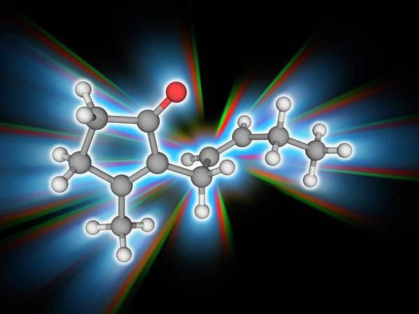 Jasmine Photograph - Jasmone Organic Compound Molecule by Laguna Design/science Photo Library