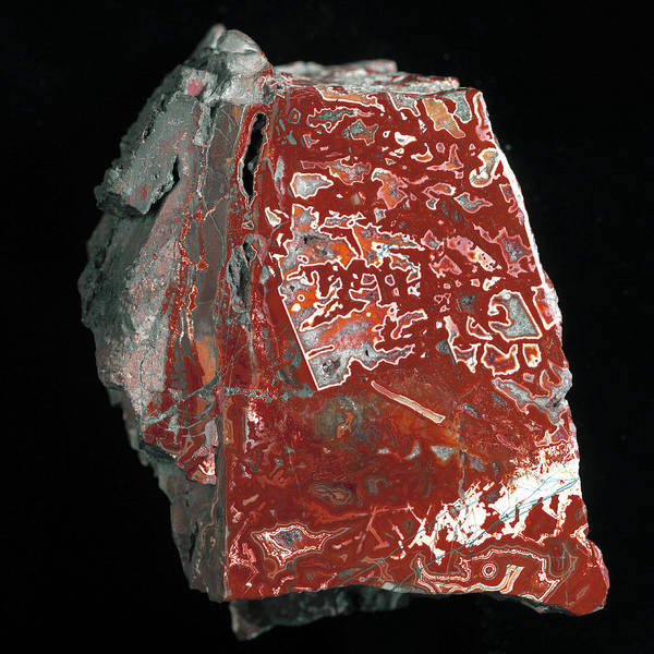 Silicon Dioxide Photograph - Jasp Agate Stone by Natural History Museum, London/science Photo Library