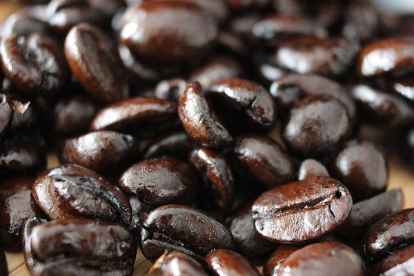 Wall Art - Photograph - Java Beans by Jeff Roney