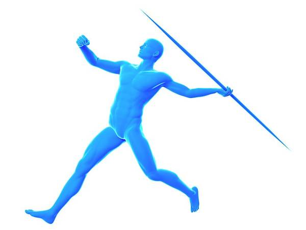 Javelin Photograph - Javelin Thrower by Sebastian Kaulitzki/science Photo Library