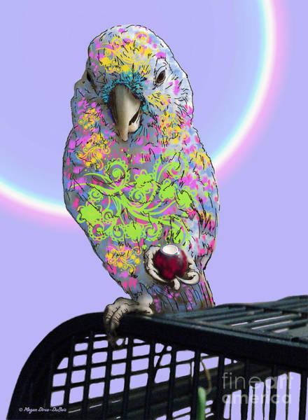 Photograph - Jawbreaker-dandy by Megan Dirsa-DuBois