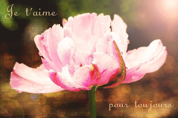 Photograph - Je T'aime Pour Toujours by Trina  Ansel