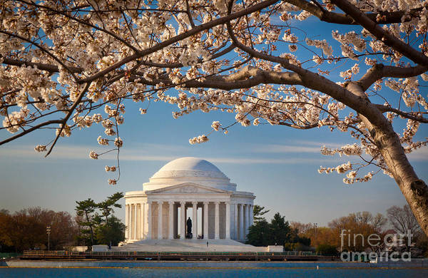 National Mall Wall Art - Photograph - Jefferson Memorial by Inge Johnsson