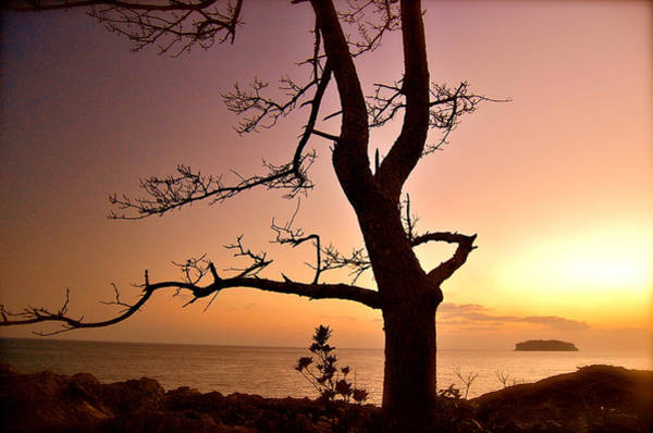 Photograph - Jeju Sunset by Yen