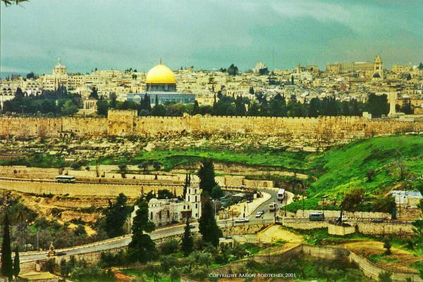 Wall Art - Photograph - Jerusalem Eastern Gate by Aaron Bodtcher