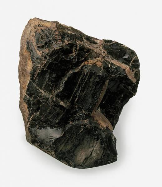Geological Photograph - Jet (lignite) Rough by Dorling Kindersley/uig