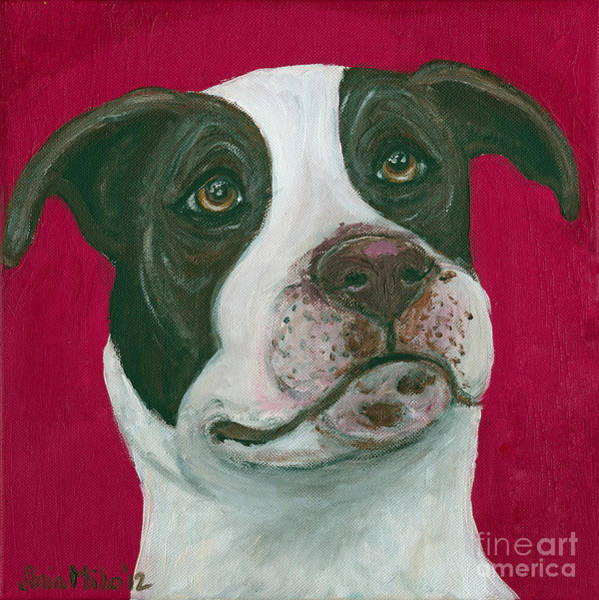 Painting - Jethro On Red by Ania M Milo