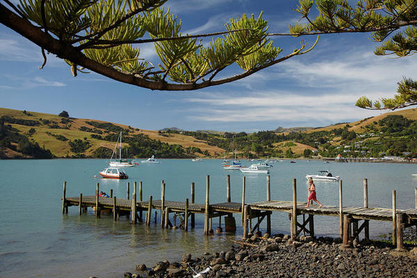 Wall Art - Photograph - Jetty, Akaroa, Banks Peninsula by David Wall