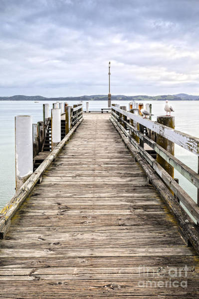 Auckland Photograph - Jetty At Maraetai Beach Auckland New Zealand by Colin and Linda McKie