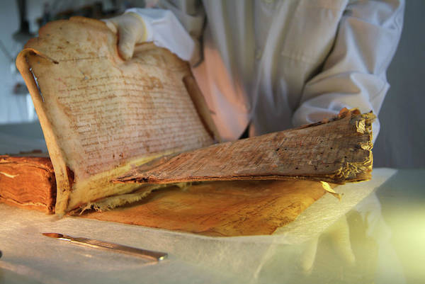 Hebrews Photograph - Jewish Medieval Heritage by Marco Ansaloni / Science Photo Library