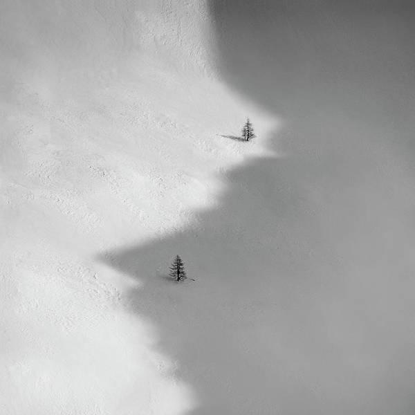 Snowy Trees Photograph - Jinjang by Peter Svoboda, Mqep