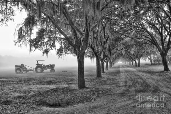 John Deer Tractor And The Avenue Of Oaks Art Print