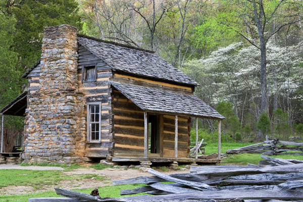 John Oliver Cabin Photograph - John Oliver Cabin In A Forest, Cades by Panoramic Images
