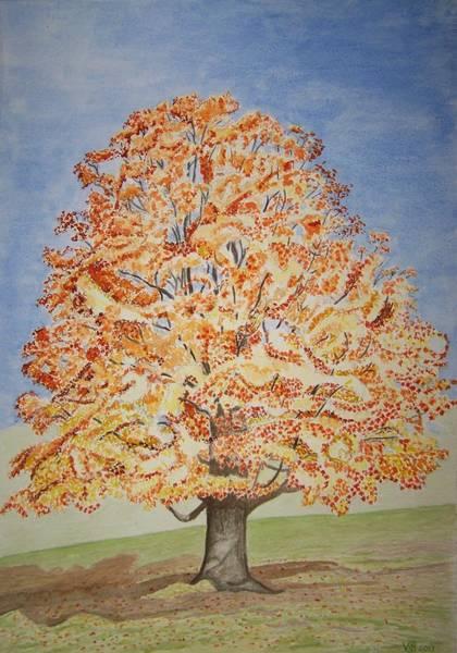 Jolanda's Maple Tree Art Print