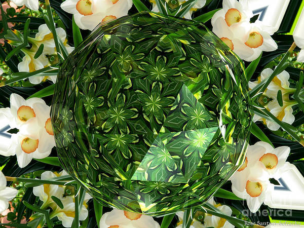 Photograph - Jonquil Kaleidoscope Under Polyhedron Glass by Rose Santuci-Sofranko